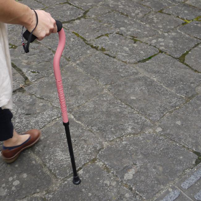 杖「フラミンゴ2」【サイズ伸縮式】