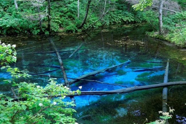 湖沼川渓谷編1位:神の子池
