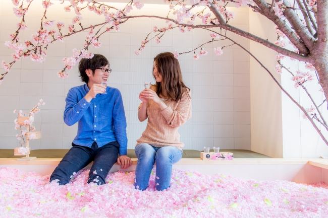 佐賀の名産を楽しみながらインドア花見を楽しめます