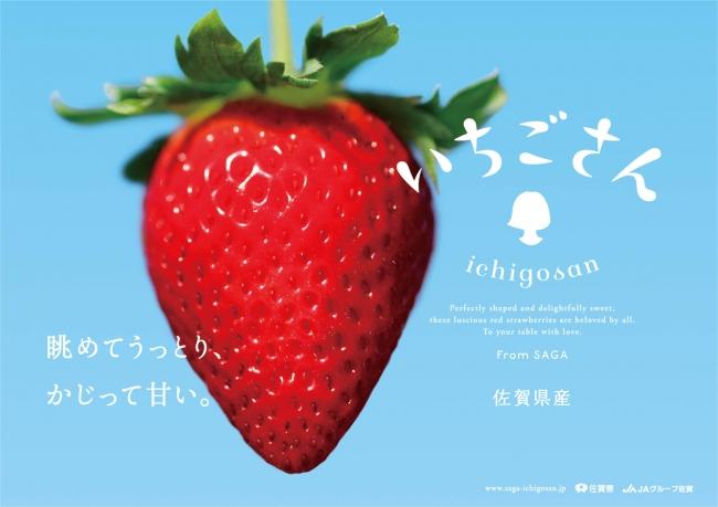 佐賀のいちご新ブランド「いちごさん」も楽しめます