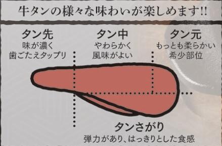 タンの部位イメージ図