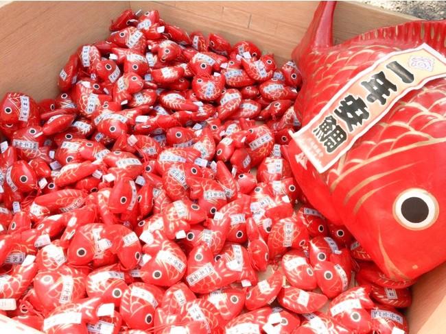 川越氷川神社で人気の「一生安泰みくじ」