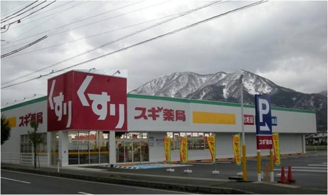 店舗 スギ 薬局