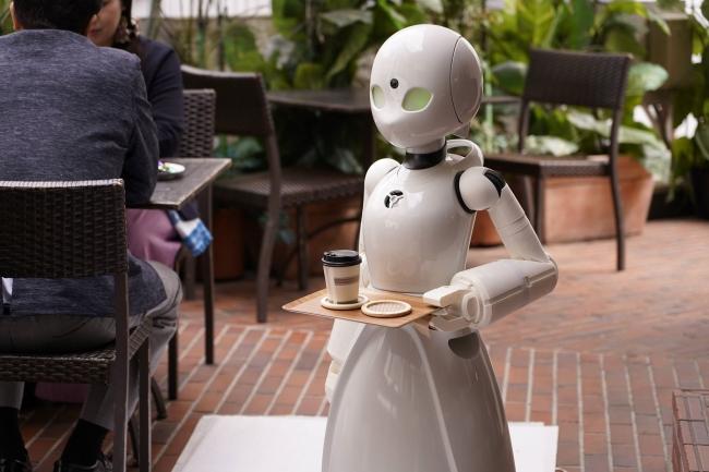 分身ロボットカフェで働くOriHime-D