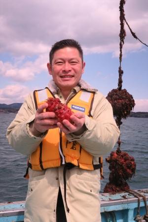 「中国料理 皇家龍鳳」料理長 山本 ほやの養殖場 視察の様子