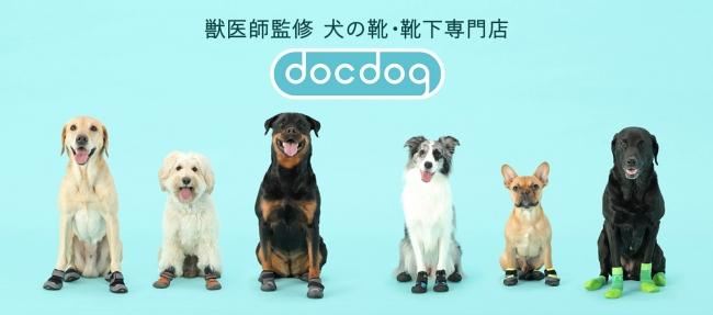 犬の靴・靴下専門店