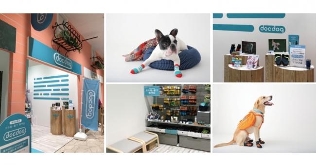 犬の靴・靴下の専門店