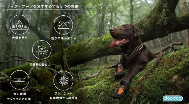 プレスリリース 犬靴専門店|EC