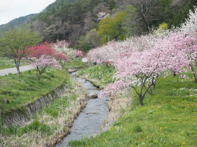 水と自然が豊かな木祖村の風景