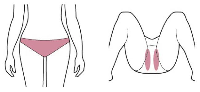 (図1)V・Iライン