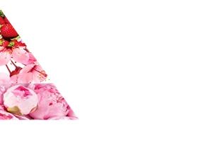 ジャパニーズチェリーブロッサム ストロベリーキス 香りのピラミッド