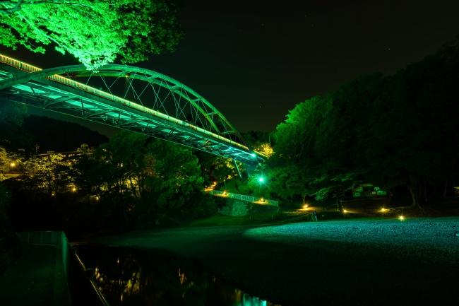 グリーンライトアップイメージ