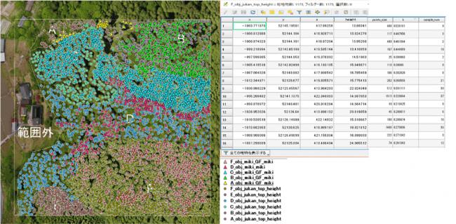 点群データから算出した、樹木の本数・高さ・幹径情報