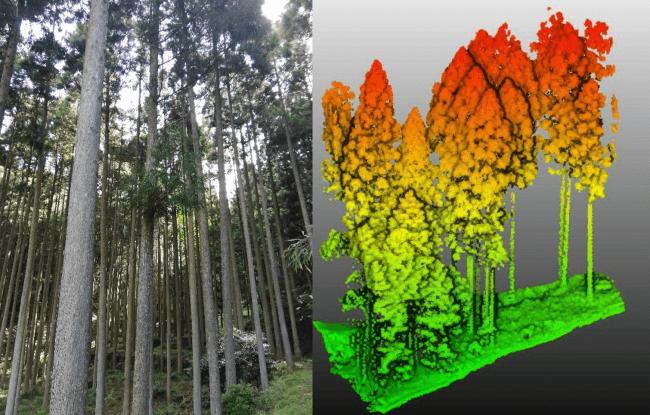 計測実施環境およびTerra Lidar(テラライダー)による樹木の点群取得状況
