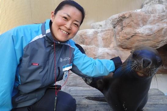 サンシャイン水族館 アシカ担当 飼育スタッフ 小倉知恵子(おぐらちえこ)