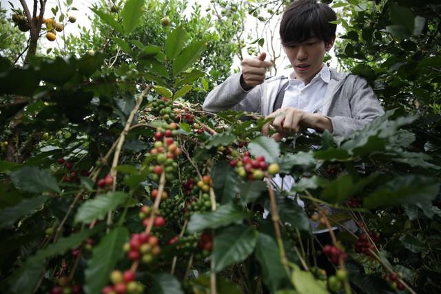 代表の川野が実際に農園まで足を運び、  農家と一緒に美味しいコーヒーの生産に取り組みます。