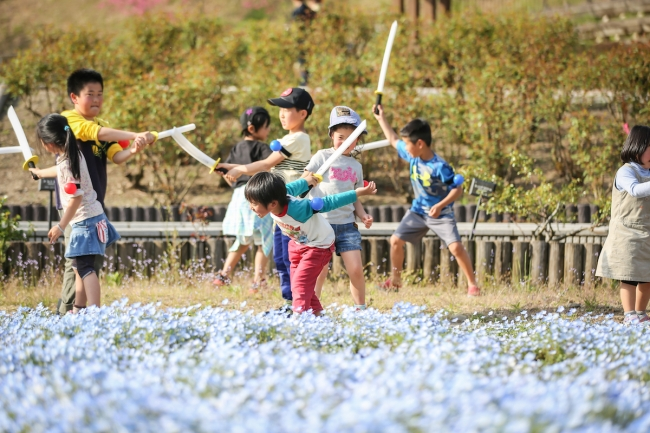 花フェスタ記念公園での戦い