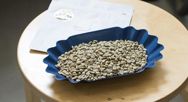ペルー エルセロ農園のコーヒー生豆