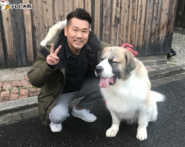 藤本敏史(FUJIWARA)とイヌ