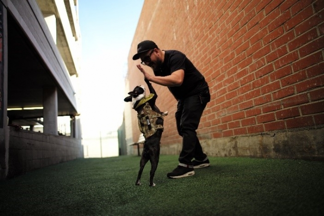 デザイナーMike Macedaと彼の愛犬MUGI