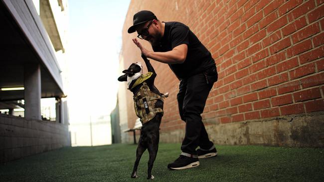デザイナーと愛犬MUGI