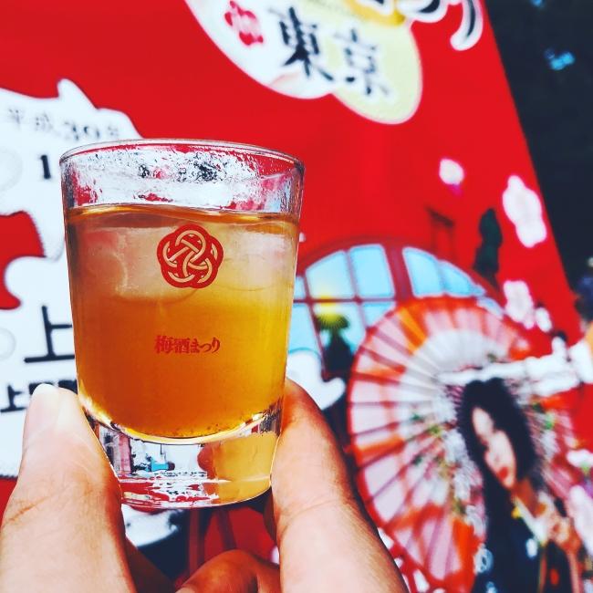 日本全国の梅酒を飲み比べ
