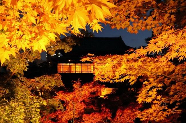 旧斎藤家別邸ライトアップ