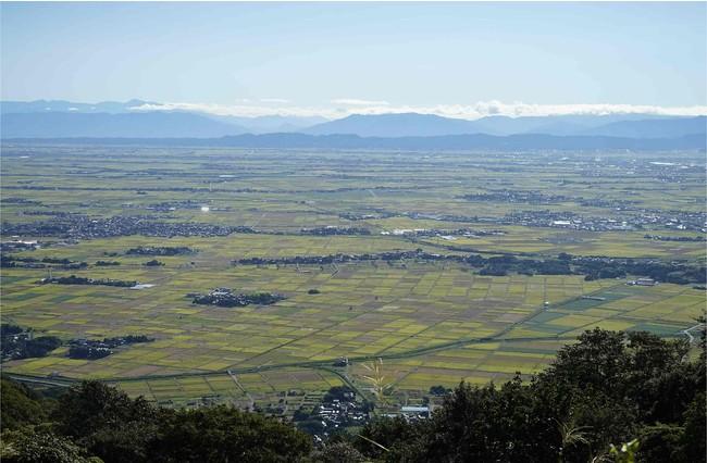 頂上から見える広大な越後平野
