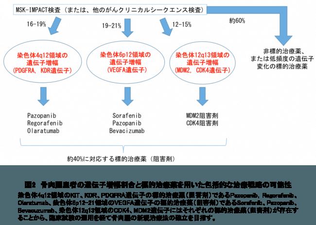 図2 骨肉腫患者の遺伝子増幅割合と標的治療薬を用いた包括的な治療戦略の可能性