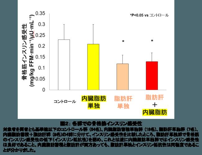 図2: 各群での骨格筋インスリン感受性