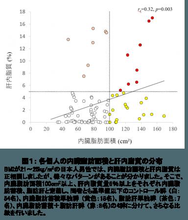 図1: 各個人の内臓脂肪面積と肝内脂質の分布