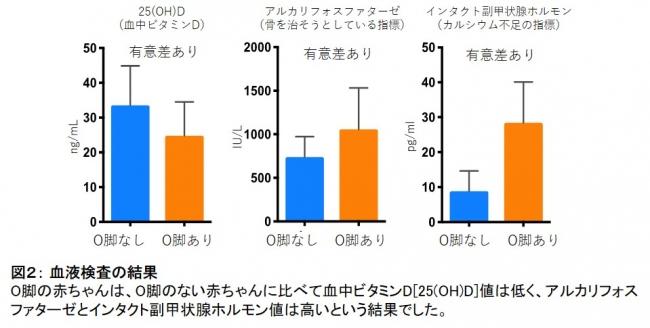 図2: 血液検査の結果