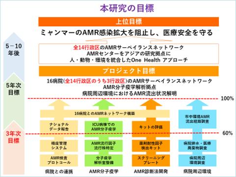 プロジェクト ロードマップ (予定)