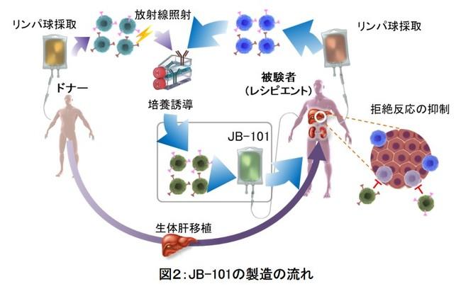 図2:JB-101の製造の流れ