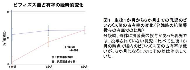 図1 生後1か月から6か月までの乳児のビフィズス菌の占有率の変化(分娩時の抗菌薬投与の有無での比較)