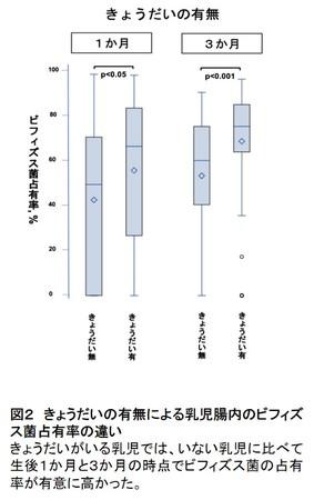 図2 きょうだいの有無による乳児腸内のビフィズス菌占有率の違い
