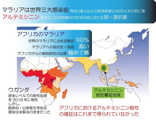 図1 アフリカのマラリアとアルテミシニン耐性