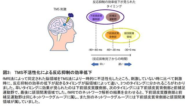図3: TMS不活性化による反応抑制の効率低下