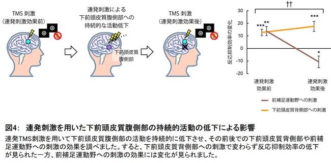 図4: 連発刺激を用いた下前頭皮質腹側部の持続的活動の低下による影響