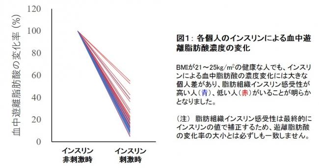 図1: 各個人のインスリンによる血中遊離脂肪酸濃度の変化