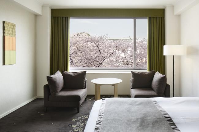 ザ・プリンス さくらタワー東京の客室から眺める日本庭園の桜