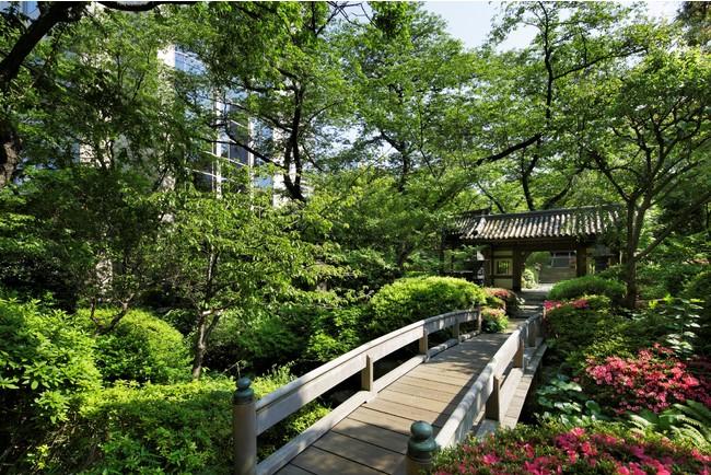 3つのホテルに囲まれた約2万平米の日本庭園