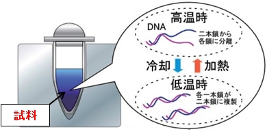 図1 従来のPCR装置の温度制御法