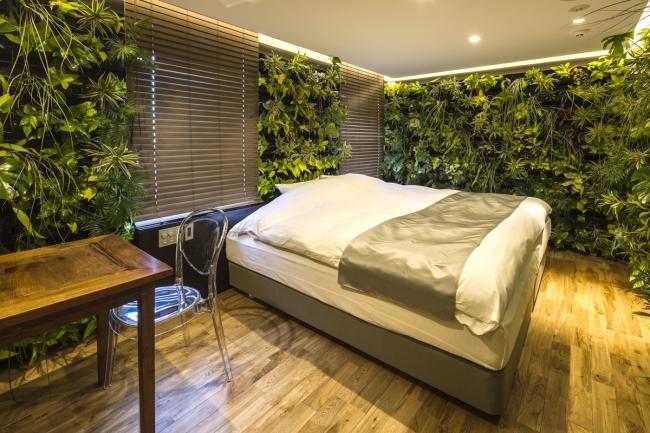 壁面四方が本物の植物で覆われている西畠清順氏のコンセプトルーム(711号室)。