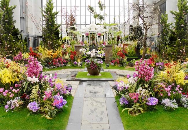 奇跡の星の植物館 淡路夢舞台ラン展イメージ