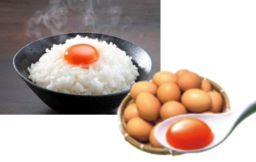 極上の卵かけごはん