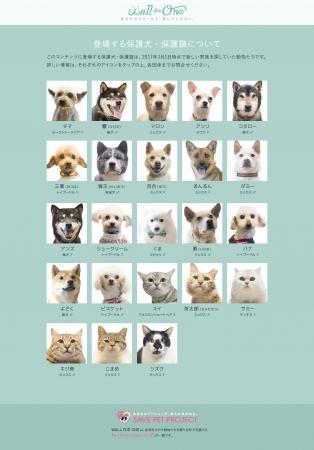 Facebookのウォール(投稿欄)貸し出しを待つ保護犬・保護猫一覧(全23頭)