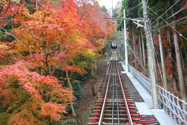 ≪ケーブルカーからの紅葉の景色≫