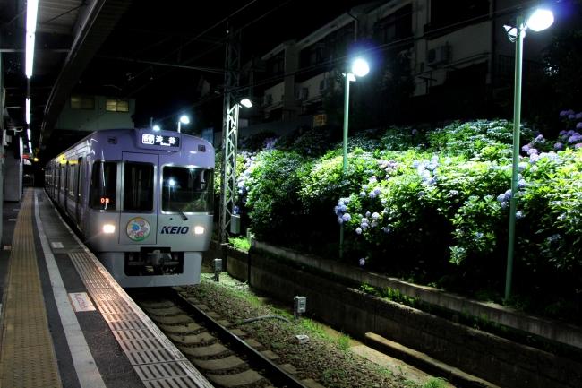 井の頭線東松原駅