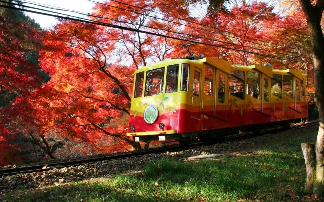 高尾山の紅葉とケーブルカー